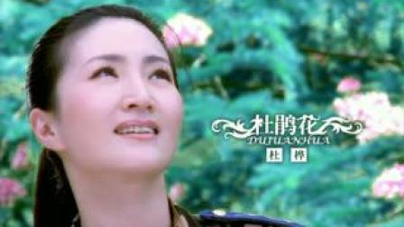 旗袍美人杜桦原创歌曲《杜鹃花》精彩无限!