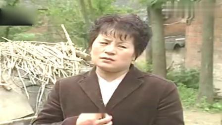 民间小调:《三妯娌骂架》刘晓燕,不养老人终于有报应,精彩