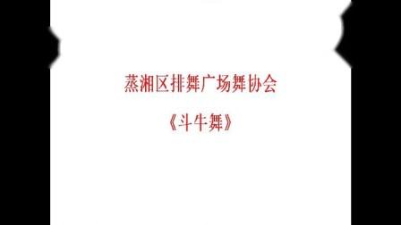 衡阳市石鼓区排舞广场舞协会成立授牌仪式(开场舞-蒸湘区排舞广场舞协会表演)斗牛舞(1)