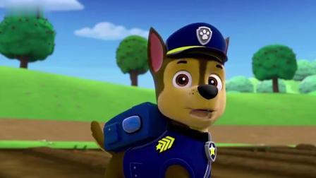 汪汪队立大功小兔子跑的太快了,阿奇根本追不上他们