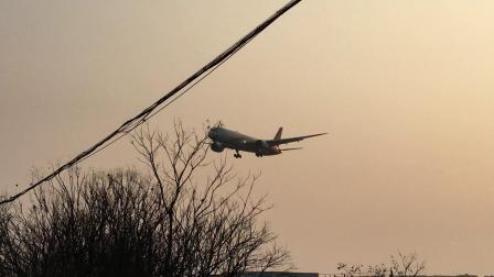 HU7361(广州-杭州)  海南航空B789(B-7837)降落在萧山机场06跑道   2019.02.01  16:45拍摄