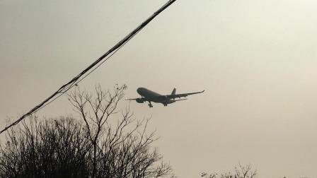 MU7032(夏威夷-杭州)  东航春运包机A332(B-6082)降落在萧山机场06跑道   2019.02.01  15:34拍摄