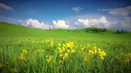 快乐驴途户外之呼伦贝尔大草原风光摄影