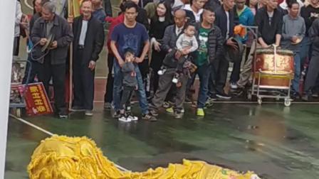 2019年大年初一肇庆市鼎湖区永安各村委在永安文化广场的醒狮表演
