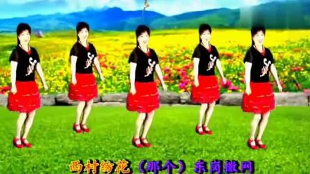 最经典广场舞老歌《在希望的田野上》,好听又好看,简单易学!