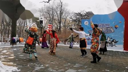 北京锅庄_20190212_雪后在陶然亭公园跳《玉树情歌》
