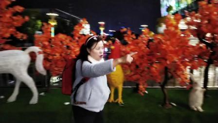 义乌新文汇十二生肖夜景 手机拍