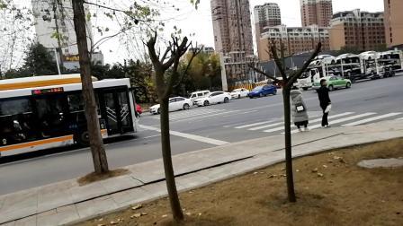 成龙大道延时摄影