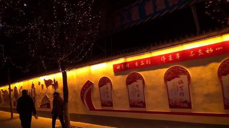 火树银花不夜天 星光灿烂驻马店 正风视频