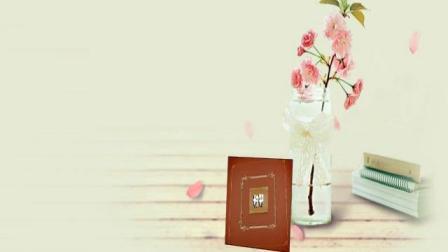 西泰山纪念册
