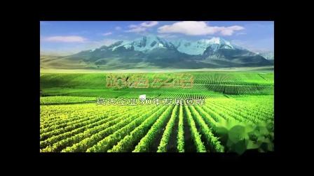 高氏企业30年--中国葡萄之乡大泽山
