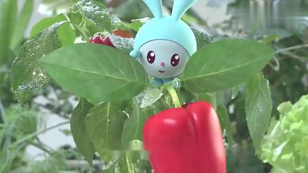 瑞奇宝宝:跳跳来到菜园子,这些蔬菜都认识吗?哪个是胡萝卜