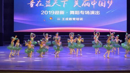 王成教育培训2019跨年舞蹈专场演出《好宝宝》
