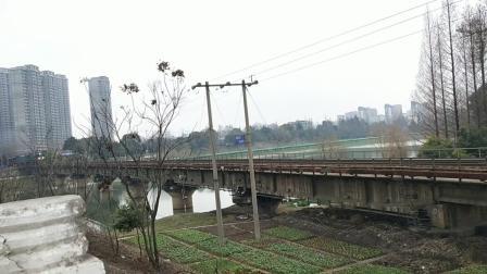 2019年新春拍车,下行货车通过!