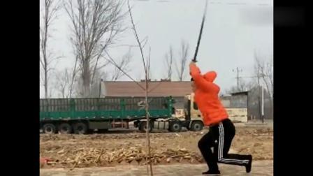 民间高手习练双手剑,剑术精湛,平常人难近其身吧