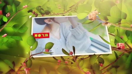 19ED104  小清新夏日展示模板ED模板edius片头模板微客素材网