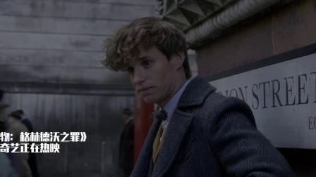 神奇动物:邓布利多年轻的时候真帅!为了格兰芬多!
