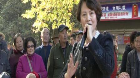 河南豫园春友艺术团演出:豫剧 樊梨花征西选段(李风俐演唱 )