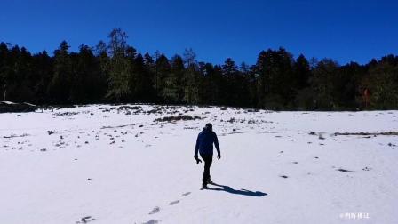 香格里拉的林海雪原