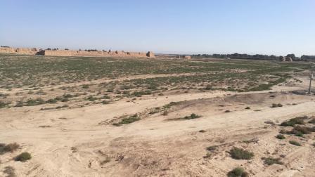 张掖高台 骆驼城遗址