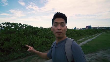 台湾VLOG-6【超棒的鹅卵石海滩】最美七星潭