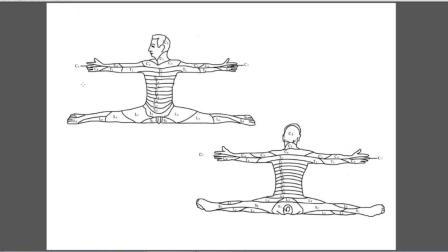 脊柱相关疾病