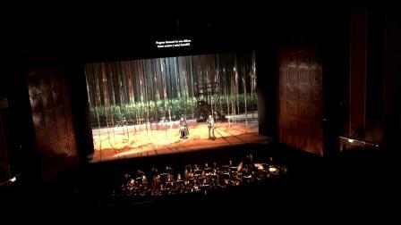 "Carlos Gomes 歌剧""Lo Schiavo""  Rodrigo 和 Americo 二重唱  意大利卡利亚里歌剧院"