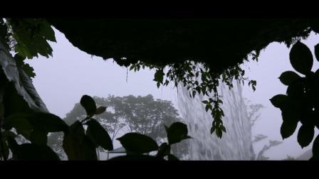 哥斯达黎加瀑布花园