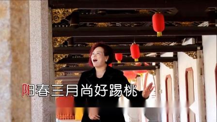七仙姐唱的歌曲
