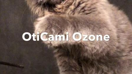OtiCami Ozone