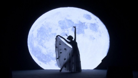 云南傣族孔雀舞《白月光》