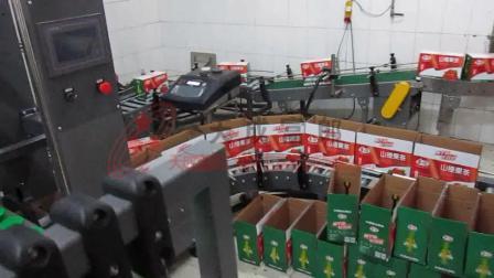 果汁饮料开箱机跌落式装箱机封箱机