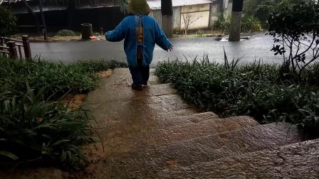 金鹗山公园