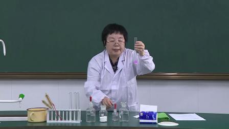 化学实验11 探究久置干燥剂(CaO)的成分