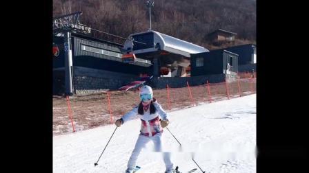 山里兽教你初级滑雪