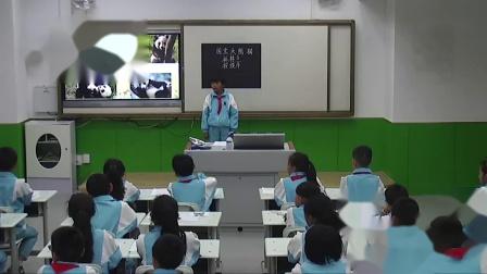 新-乌市136小-闫芳-部编版三年级下册《国宝大熊猫》-_超清
