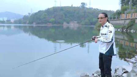 老虎路亚游钓中国广东 排骨老虎 探钓水库大翘嘴