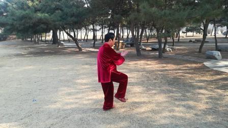 明圆杨氏太极拳85 式演练