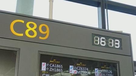 浦东0320-CA1865
