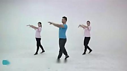 王广成标准广场舞《站在草原望北京》