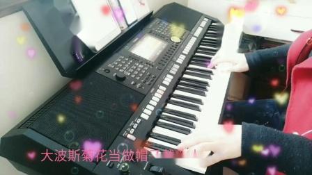 雅马哈PSR-S975电子琴《花仙子之歌》