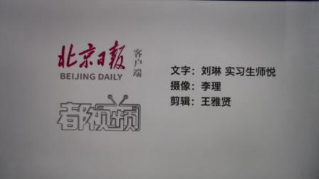 北京日报客户端沙河东方白鹳