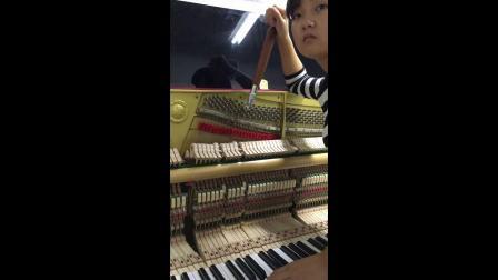 (一)平均律第一个音-邹德庭钢琴调律学习培训班学员学习实况