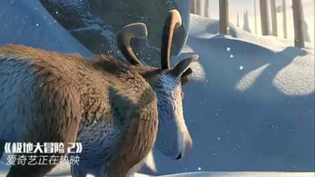极地大冒险2(片段)老鹰抓错了驯鹿,要抓会飞的驯鹿!