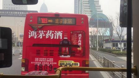 奶咖拍摄 - 81路 无锡公交 欧式电显金旅混动31949 金城桥→惠畅里