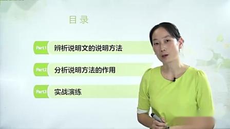 说明文阅读(二)-辨析说明文的说明方法-国语高清