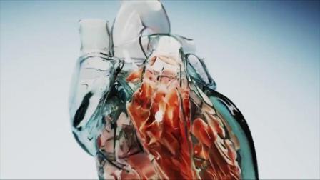医学原理动画模拟.mp4