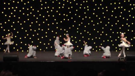 魅力校园第25届中新国际青少年艺术交流盛典《 小鸭寻梦记 》