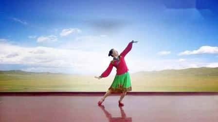 江西灵动飞舞广场舞《谁见过梦中的草原梦中的河》