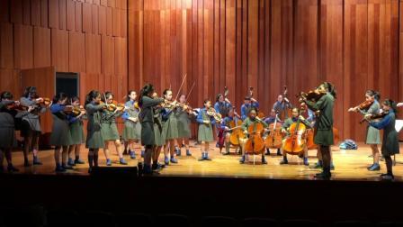 肖斯塔高维奇室内交响乐,香港女拔萃书院弦乐团